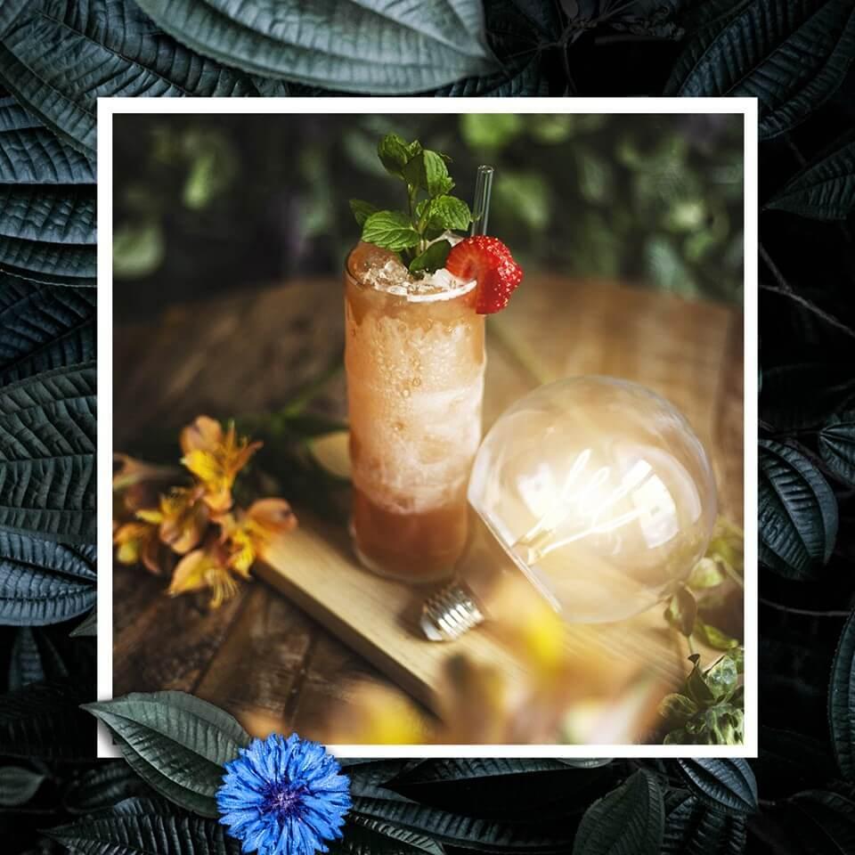WILDFLOWER_DRINK
